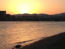 Abendsonne 29.7.2013 (Donau)